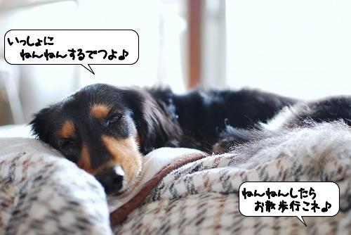 20111024_110858.jpg