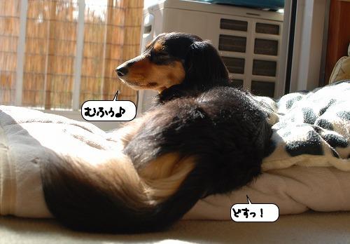 20111101_131447.jpg