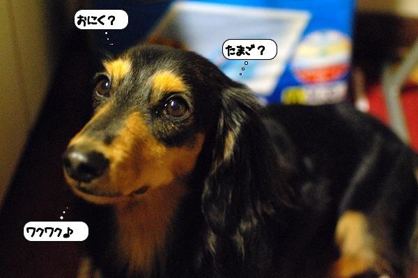 20111107_113746.jpg