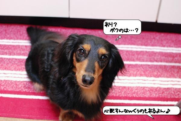 20111107_114301.jpg