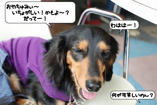 20111108_131038.jpg
