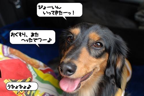 20111115_143935.jpg