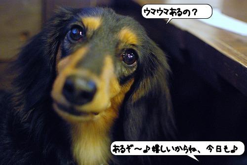 20111115_144048.jpg