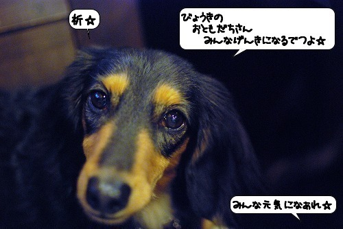 20111115_144251.jpg
