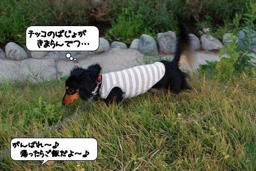 20111121_134927.jpg