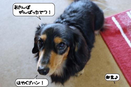 20111121_135200.jpg