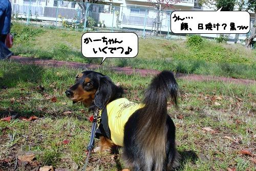 20111125_125749.jpg