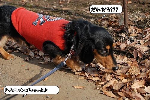 20111129_131836.jpg