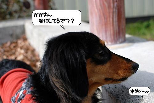 20111129_131950.jpg