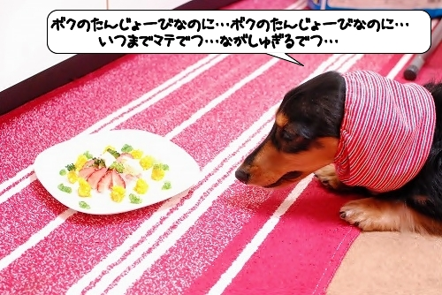 20111201_134940.jpg