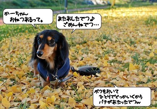 20111205_131854.jpg