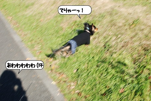 20111219_143223.jpg
