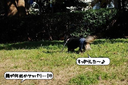 20111219_143518.jpg