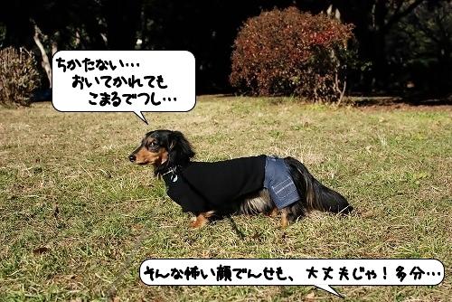 20111220_133620.jpg