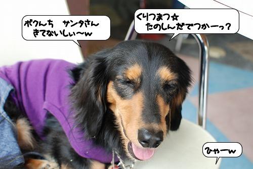 20111226_140157.jpg