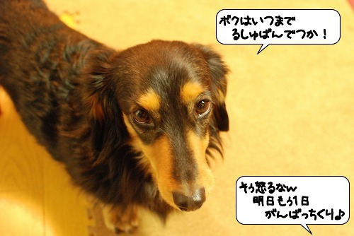 20111228_151050.jpg