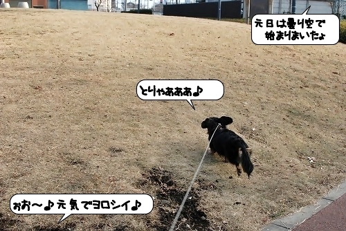 20120107_112230.jpg
