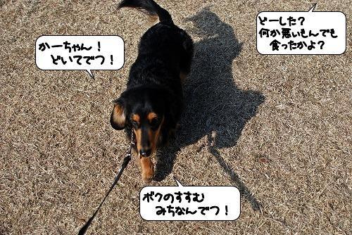 20120110_132624.jpg