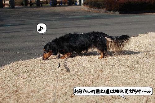 20120110_132930.jpg