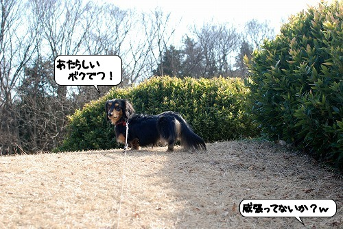 20120110_133513.jpg