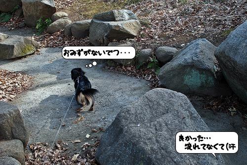 20120110_134052.jpg