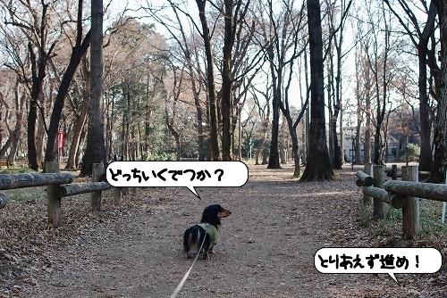 20120111_130953.jpg