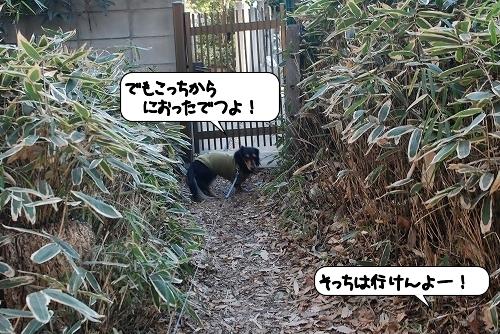 20120111_131153.jpg