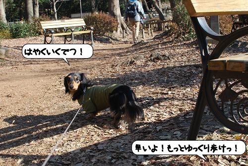 20120112_132221.jpg