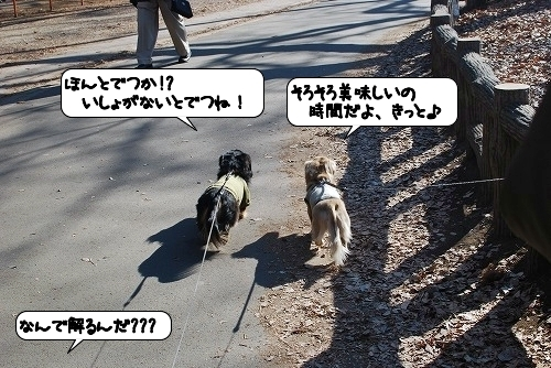 20120112_132832.jpg