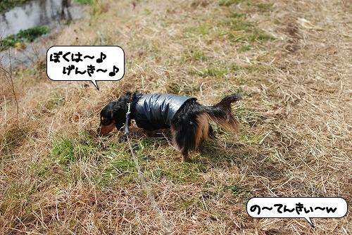 20120116_132521.jpg