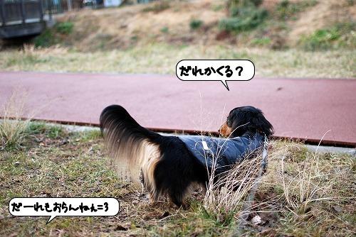 20120116_132728.jpg