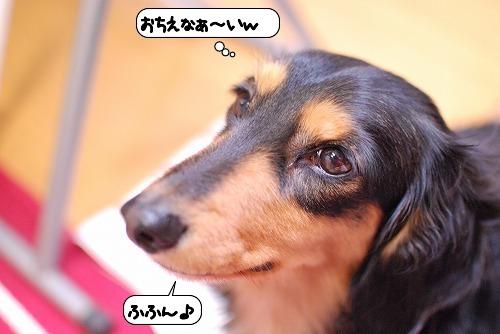 20120117_134301.jpg