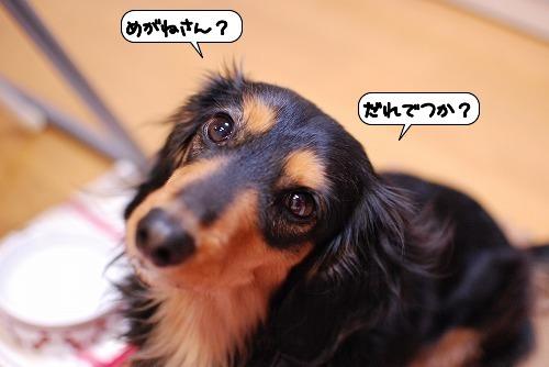 20120117_134807.jpg