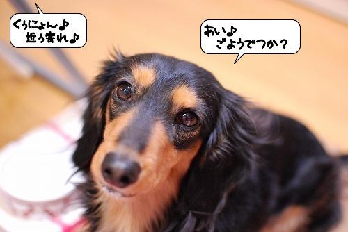 20120117_135021.jpg