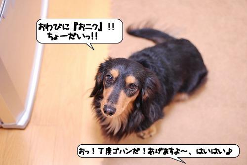 20120118_143858.jpg