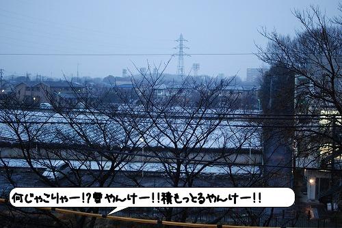 20120120_134502.jpg
