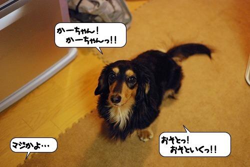 20120124_130502.jpg