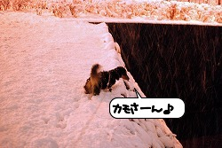 20120124_130632.jpg