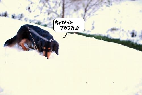 20120125_115502.jpg