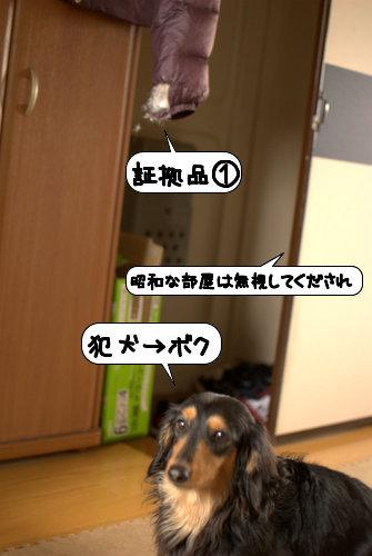 20120321_133131.jpg