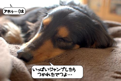 20120321_133315.jpg