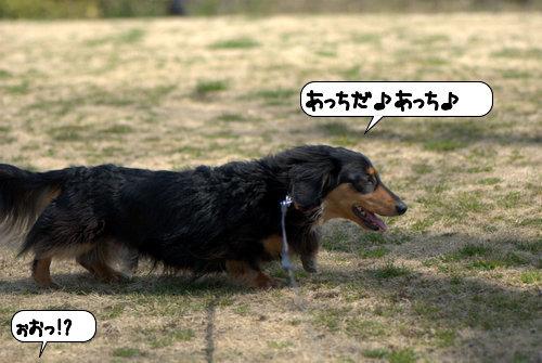 20120323_133101.jpg