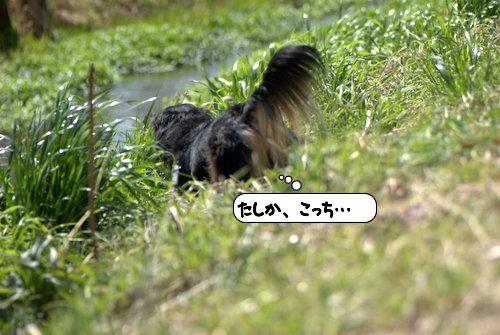 20120323_133200.jpg