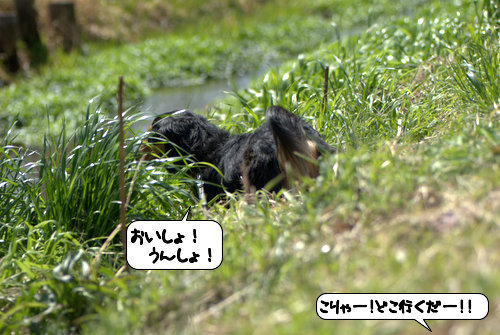 20120323_133403.jpg