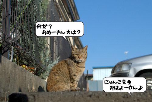 20120326_133610.jpg