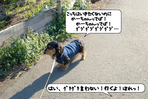 20120326_133935.jpg