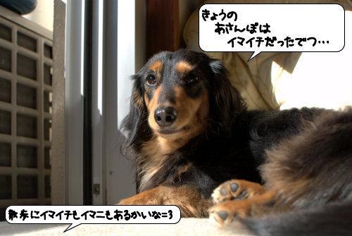 20120326_134307.jpg