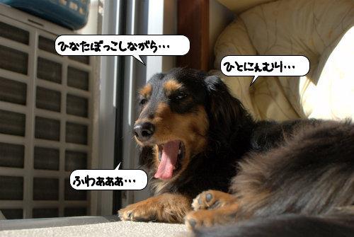 20120326_134534.jpg