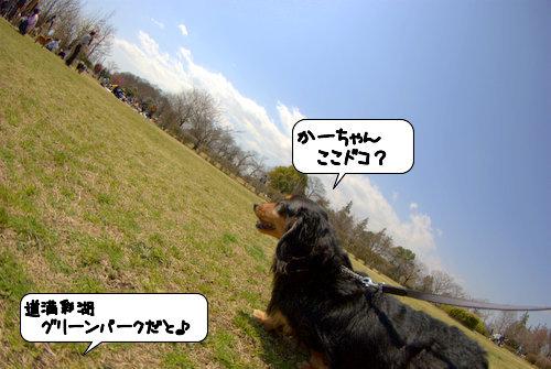 20120402_134521.jpg
