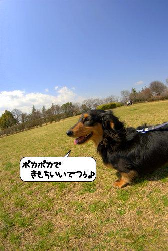 20120402_135006.jpg